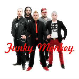 Funky Monkey (90's Party Band)