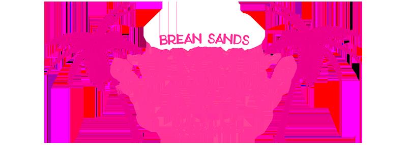 Brean Sands Summer Party Weekender Line Up